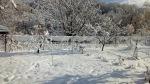 Снег в Шаумяне